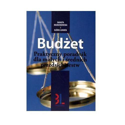 Budżet (135 str.)