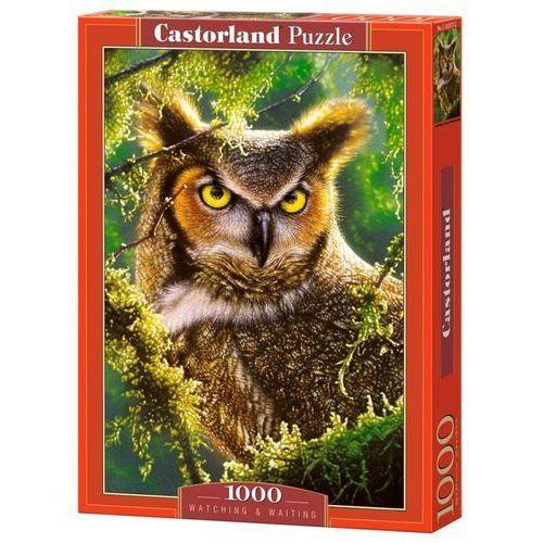 Castor 1000 elementów sowa