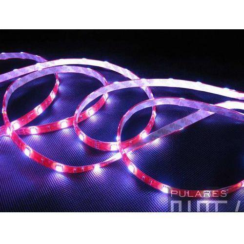 RGB taśma wodoodporna LED ECO rolka 5mb