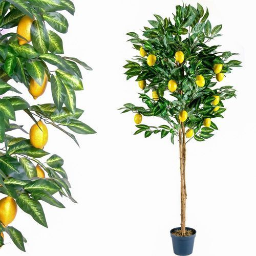 Sztuczne drzewo cytryna kwiaty drzewko dekoracja - 185 cm marki Plantasia ®