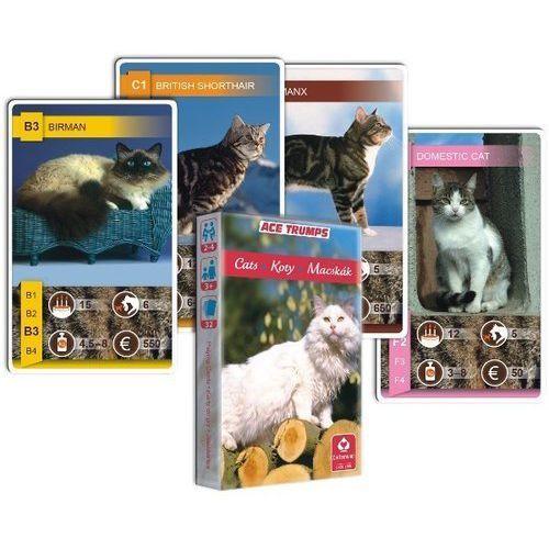 Kwartet - Koty. Karty do gry Cartamundi