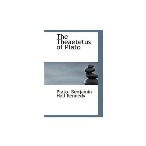perception and platos theaetetus