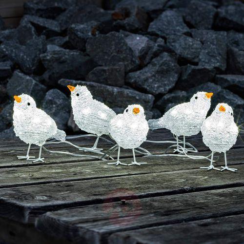 Urocza dekoracja zewnętrzna LED Ptasi kwintet