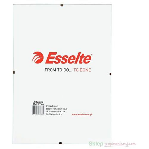 Antyrama ESSELTE 40x50cm 78784 od Sklep papierniczy