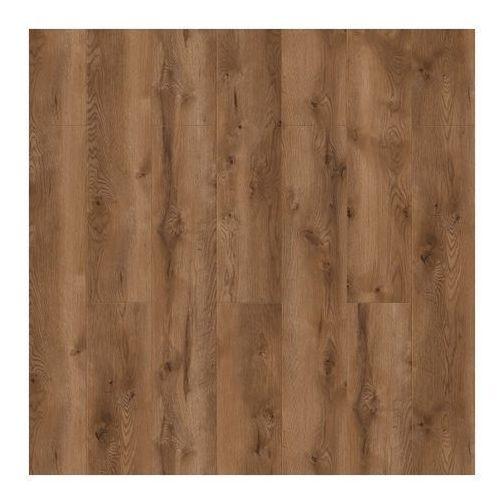 Classen Panel podłogowy harmony for dąb avan ac5 2 176 m2
