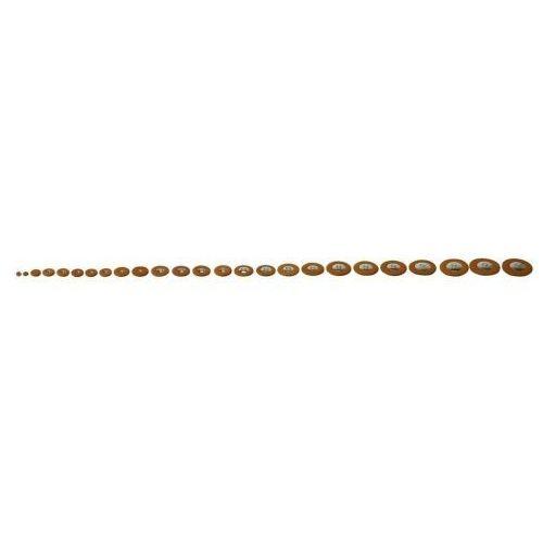 Pisoni poduszki pełne zestawy kolor: brązowy saksofon sopranowy