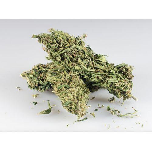 Marihuana CBD+ 10g