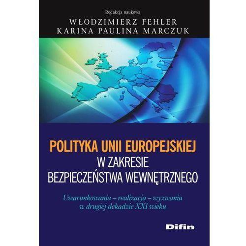 Polityka Unii Europejskiej w zakresie bezpieczeństwa wewnętrznego, DIFIN