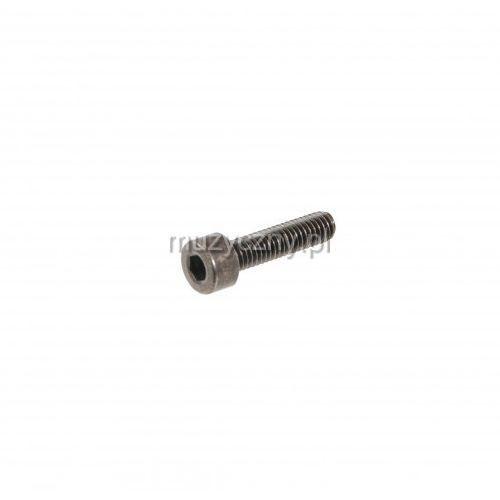 m4 śruba imbusowa 3,0 dł.20mm, czarna, do złącz panelowych zasilających typu pce marki Amex