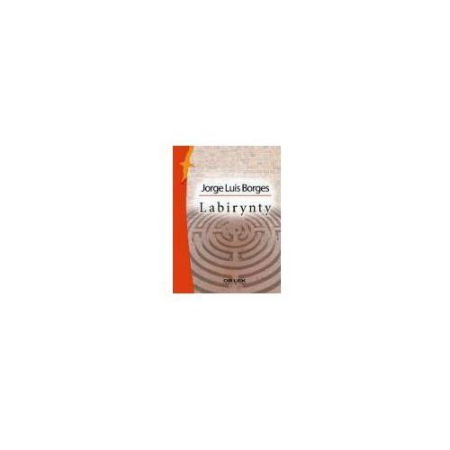 Wielcy literatury argentyńskiej (592 str.)