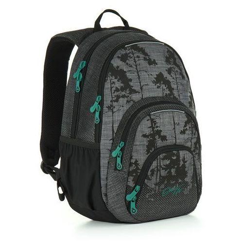 Plecak młodzieżowy Topgal HIT 896 C - Grey, kolor szary