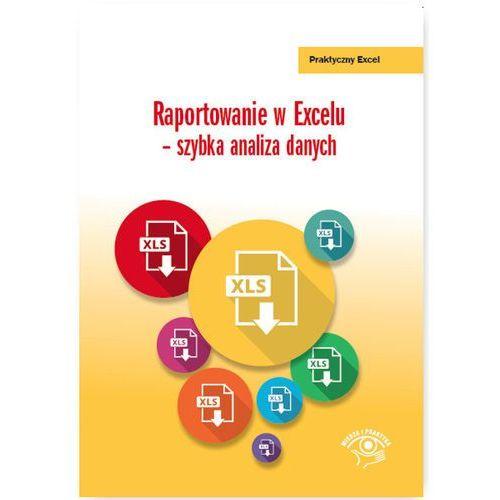 Raportowanie w Excelu szybka analiza danych (9788326952661)