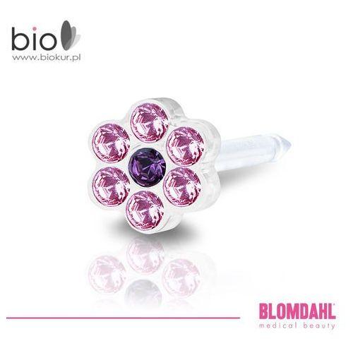 Blomdahl Kolczyk do przekłuwania uszu - daisy light rose / amethyst 5 mm