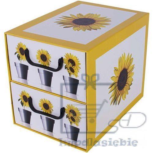 Pudełko kartonowe 2 szuflady pionowe DONICZKI-SŁONECZNIK
