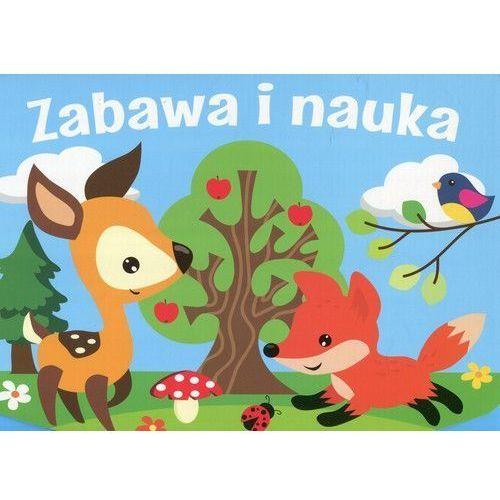 Zabawa i Nauka - Praca zbiorowa (2017)