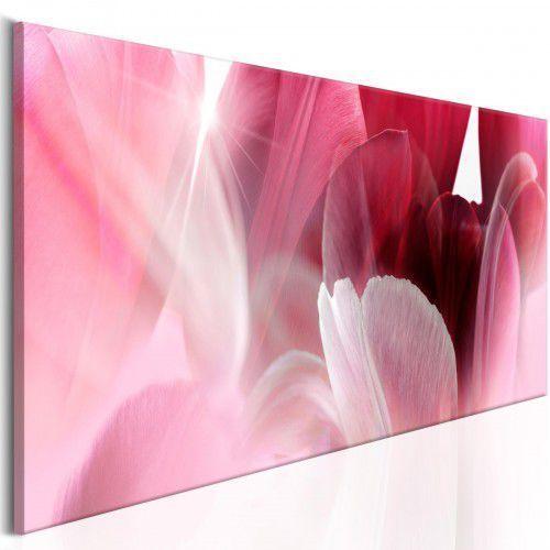 Obraz - Kwiaty: Różowe tulipany