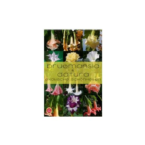 Brugmansia & Datura - Exotische Schönheiten (Wandkalender 2019 DIN A2 hoch) (9783669616911)