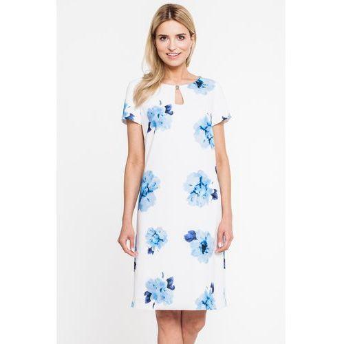 f790946542 Biała sukienka w niebieskie kwiaty - marki Paola collection 618