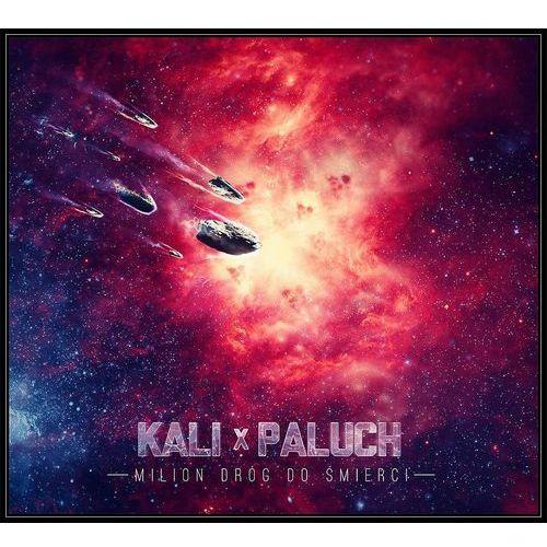 Universal music Milion dróg do śmierci (cd) - kali i paluch (5908279353993)