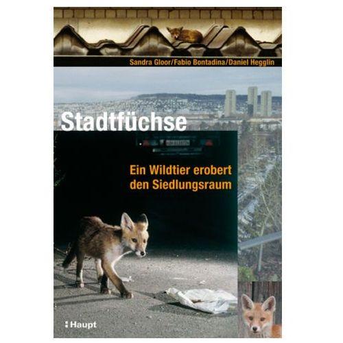 Stadtfüchse (9783258070308)