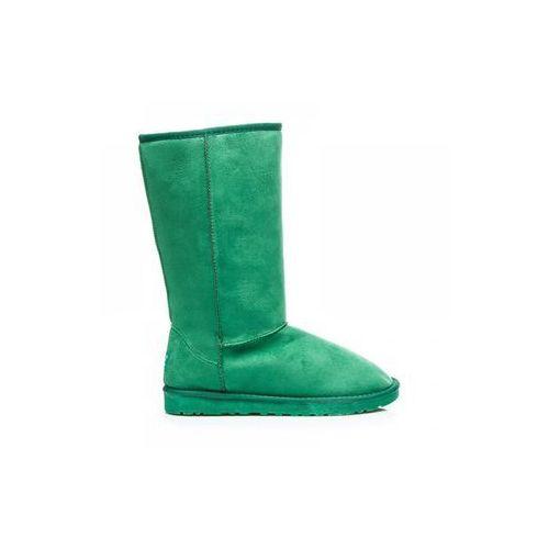 ZIMOWE ŚNIEGOWCE Zielony, kolor zielony