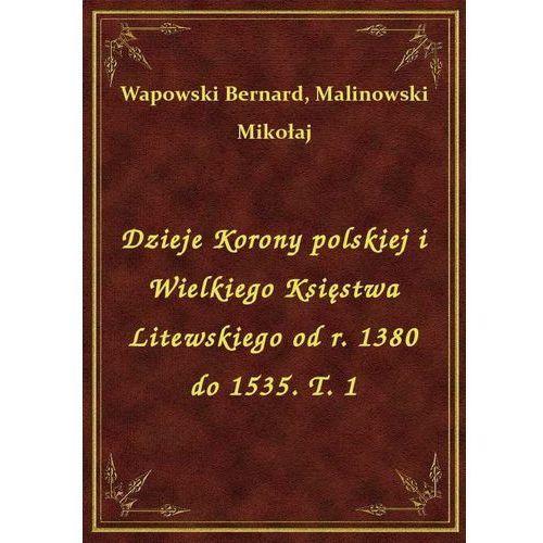 Dzieje Korony polskiej i Wielkiego Księstwa Litewskiego od r. 1380 do 1535. T. 1 (9788328424425)