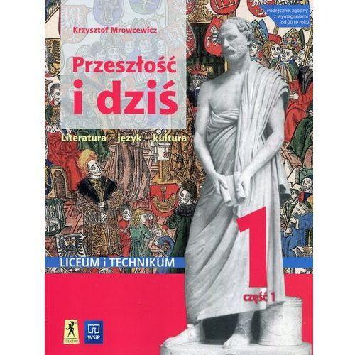 J.polski LO Przeszłość i dziś 1/1 w.2019 WSiP - Krzysztof Mrowcewicz, oprawa broszurowa