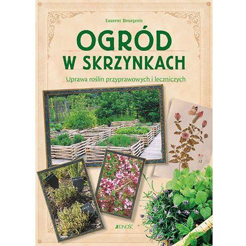 Ogród w skrzynkach Uprawa roślin przyprawowych i leczniczych - Bourgeois Laurent (90 str.)