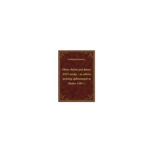 Obraz Polski pod koniec XVII wieku: ze zbioru podróży ogłoszonych w Hadze 1705 r., Klasyka Literatury Nexto