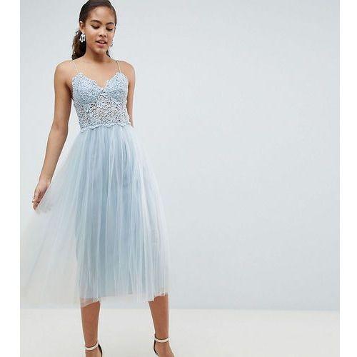 Asos design tall premium lace cami top tulle midi dress - blue marki Asos tall