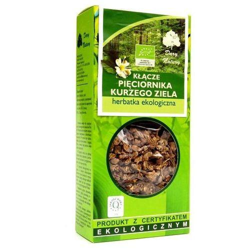 Herbatka z kłącza pięciornika kurzego ziela bio 100 g - dary natury marki Dary natury - test