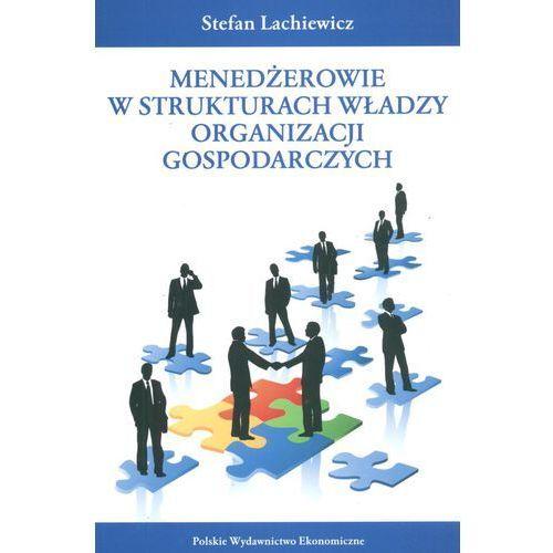 Menedżerowie w strukturach władzy organizacji gospodarczych (288 str.)