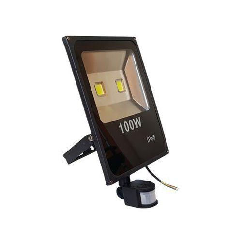 NAŚWIETLACZ LED - 100 W (z czujnikiem)