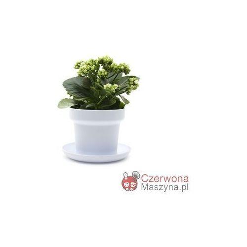 2 Doniczki na zioła Authentics Green białe - oferta [15e0662d4515b50c]