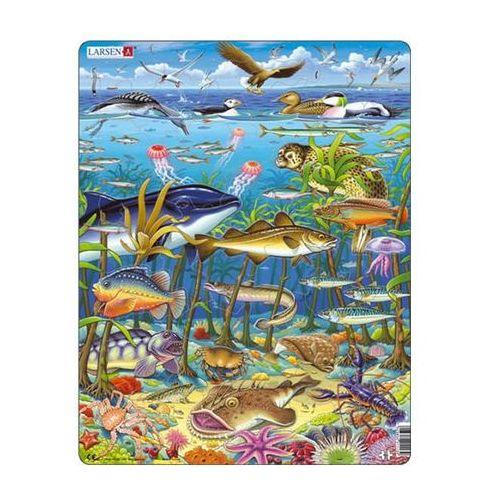 Puzzle MAXI - Zvířata v moři/60 dílků neuveden