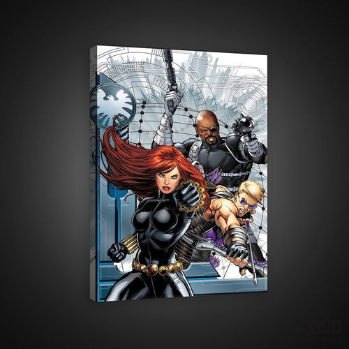 Obraz MARVEL AVENGERS: Hawkeye, Black Widow, Nick Fury PPD313O4