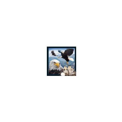 7719ca619 Magnes 3D - Orzeł bielik (5710431010916) 8,09 zł