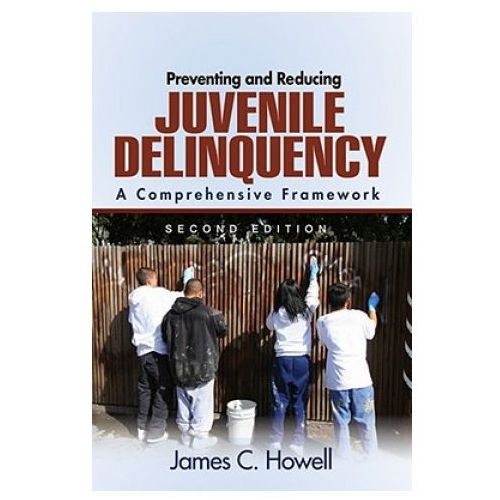 Preventing and Reducing Juvenile Delinquency (9781412956383)