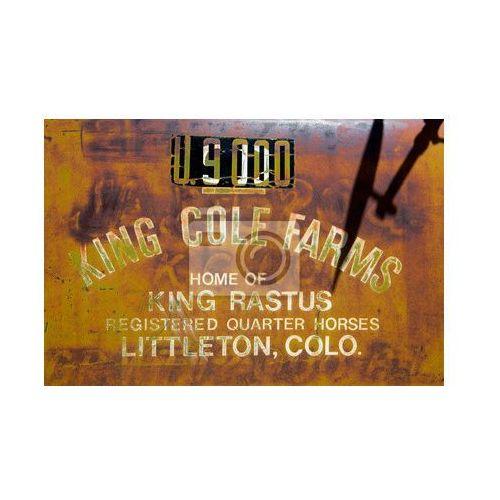 Fototapeta Vintage ogłoszenie na farmie malowane na zardzewiałego metalu tle, myloview z MyLoview