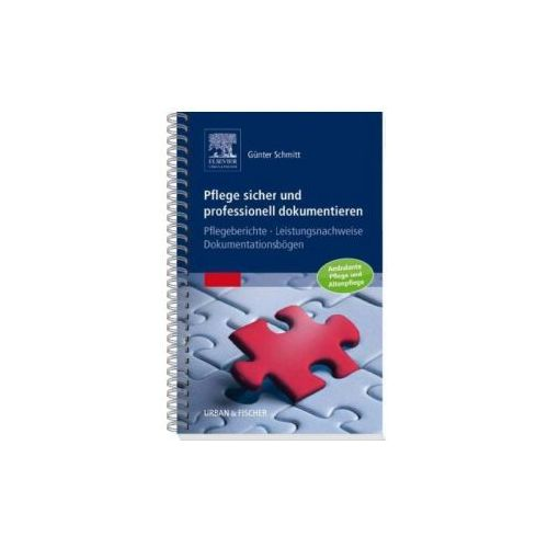 Pflege sicher und professionell dokumentieren (9783437286704)