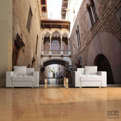 Fototapeta Barcelona Palau generalitat in gothic Barrio 100404-98