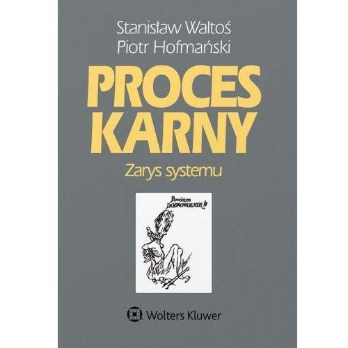 Proces karny Zarys systemu - Waltoś Stanisław, Hofmański Piotr (9788381245371)