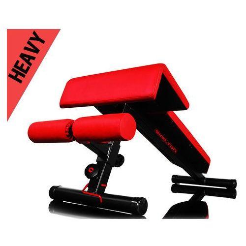 Kelton hl13 - produkt w magazynie - szybka wysyłka! (5906874215043)