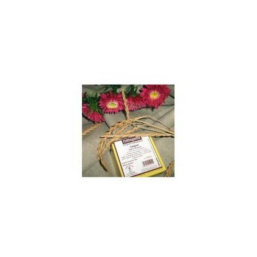 Galgant - proszek z korzenia 100g