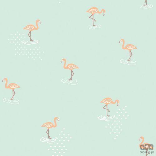 Tapeta ścienna flamingi jack 'n rose junior jr2007 bezpłatna wysyłka kurierem od 300 zł! darmowy odbiór osobisty w krakowie. marki Grandeco
