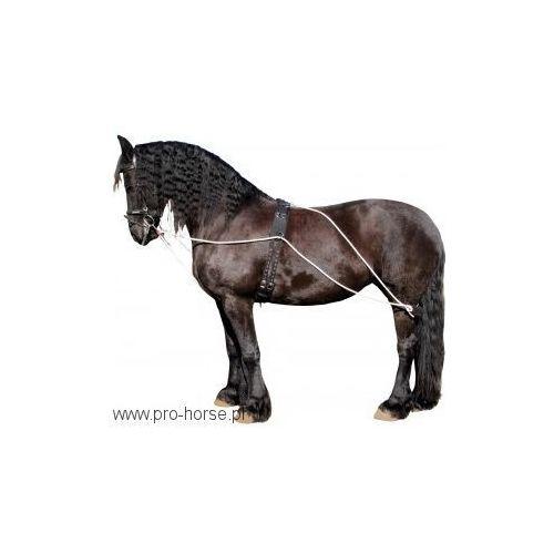 Zestaw treningowy York do lonżowania - produkt dostępny w Pro-horse Sklep Jeździecki