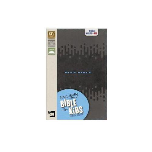 KJV, Bible for Kids, Leathersoft, Charcoal (9780310763833)