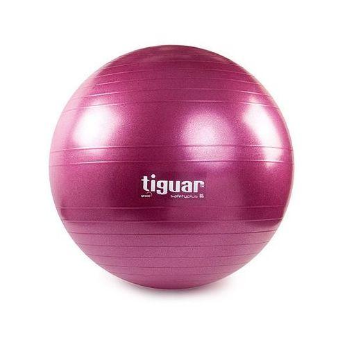 Piłka gimnastyczna 65 cm  - śliwka, produkt marki Tiguar
