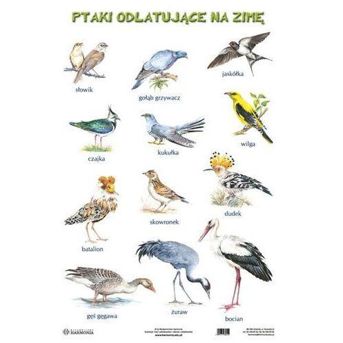 Plansza Ptaki odlatujące na zimę Ptaki pozostające na zimę - oferta [258c4a7c77e57574]