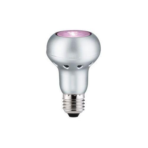 LED R63 6W E27 230V różowy z kategorii oświetlenie